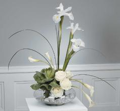Stylized White Arrangement