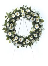 White Daisy Wreath